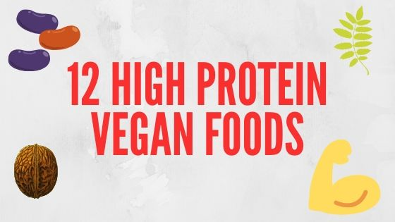 12 high protein vegan foods blog post featured image
